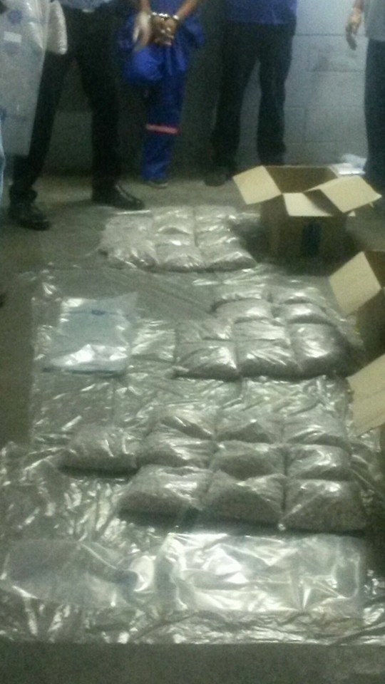 Arrest made and mandrax worth R960,000 seized in Belhar