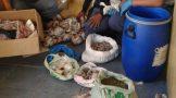Drug arrest made at an informal residence in Ou Kamp, Struisbaai
