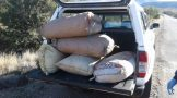 Two suspects in court for dagga valued at R158 400 in George